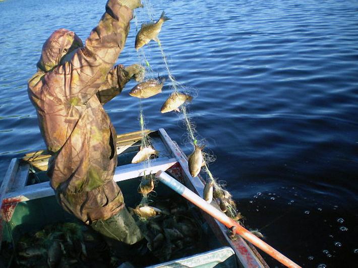 где купить рыболовные сети в беларуси
