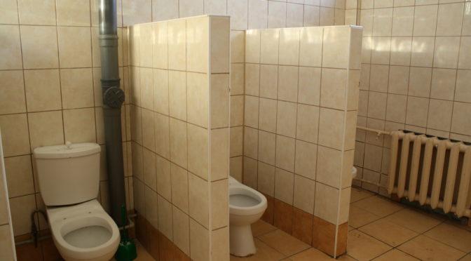 По кустам: как школьники страдают без туалетов